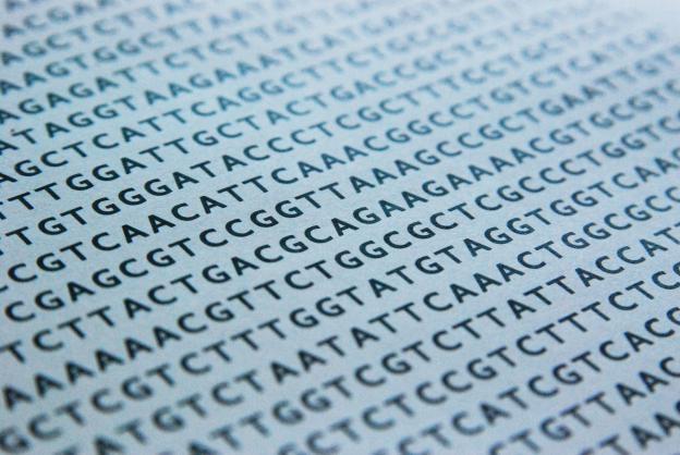 ДНК-код