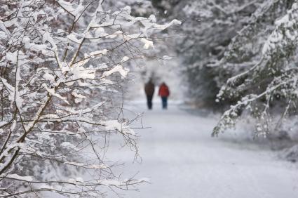 Разходките на чист въздух носят полза не само за червата, но и за цялото тяло