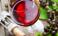 Сухите червени вина се славят с благотворния си ефект върху сърцето и съдовете
